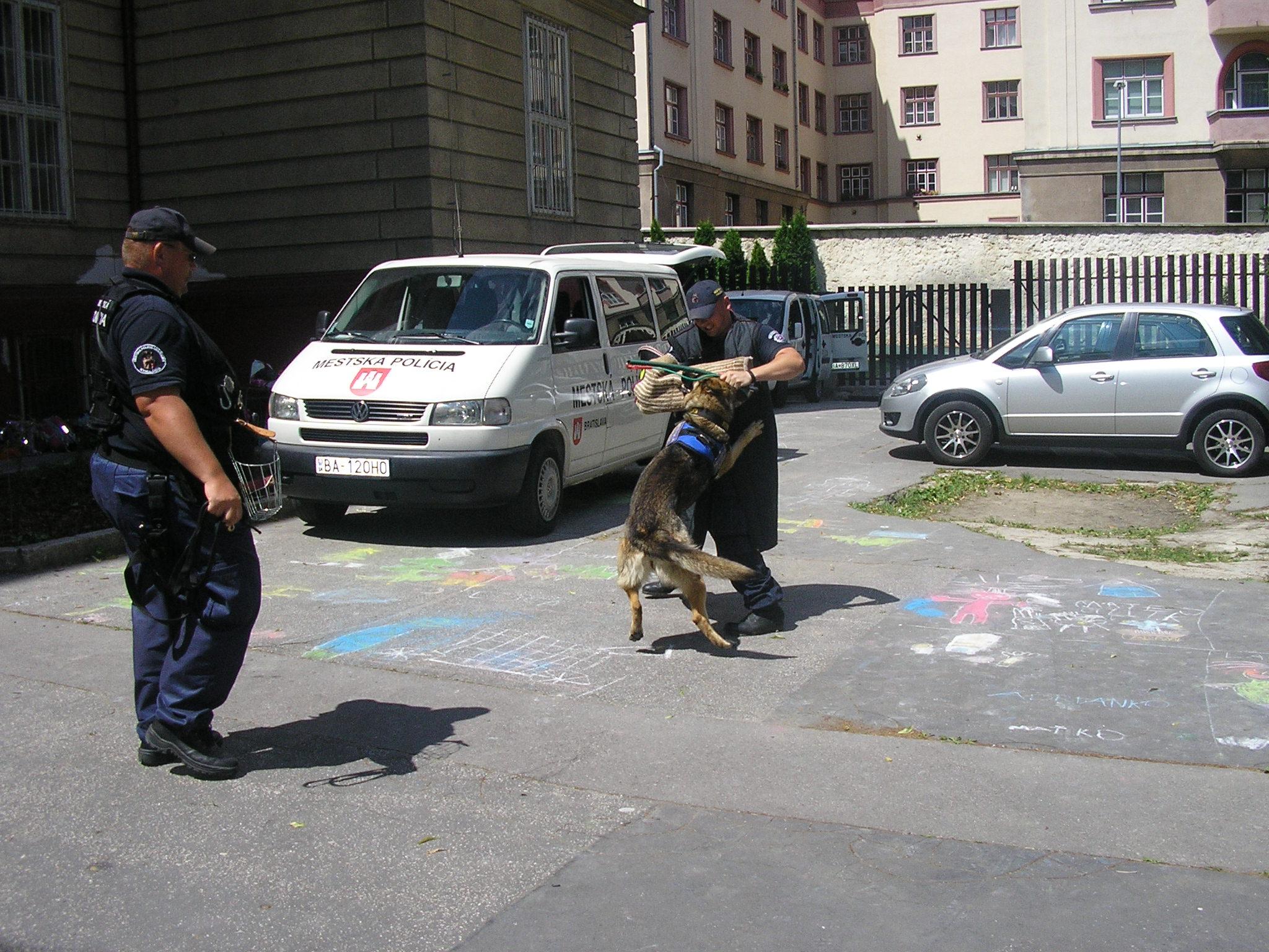 Výcvik policajných psov