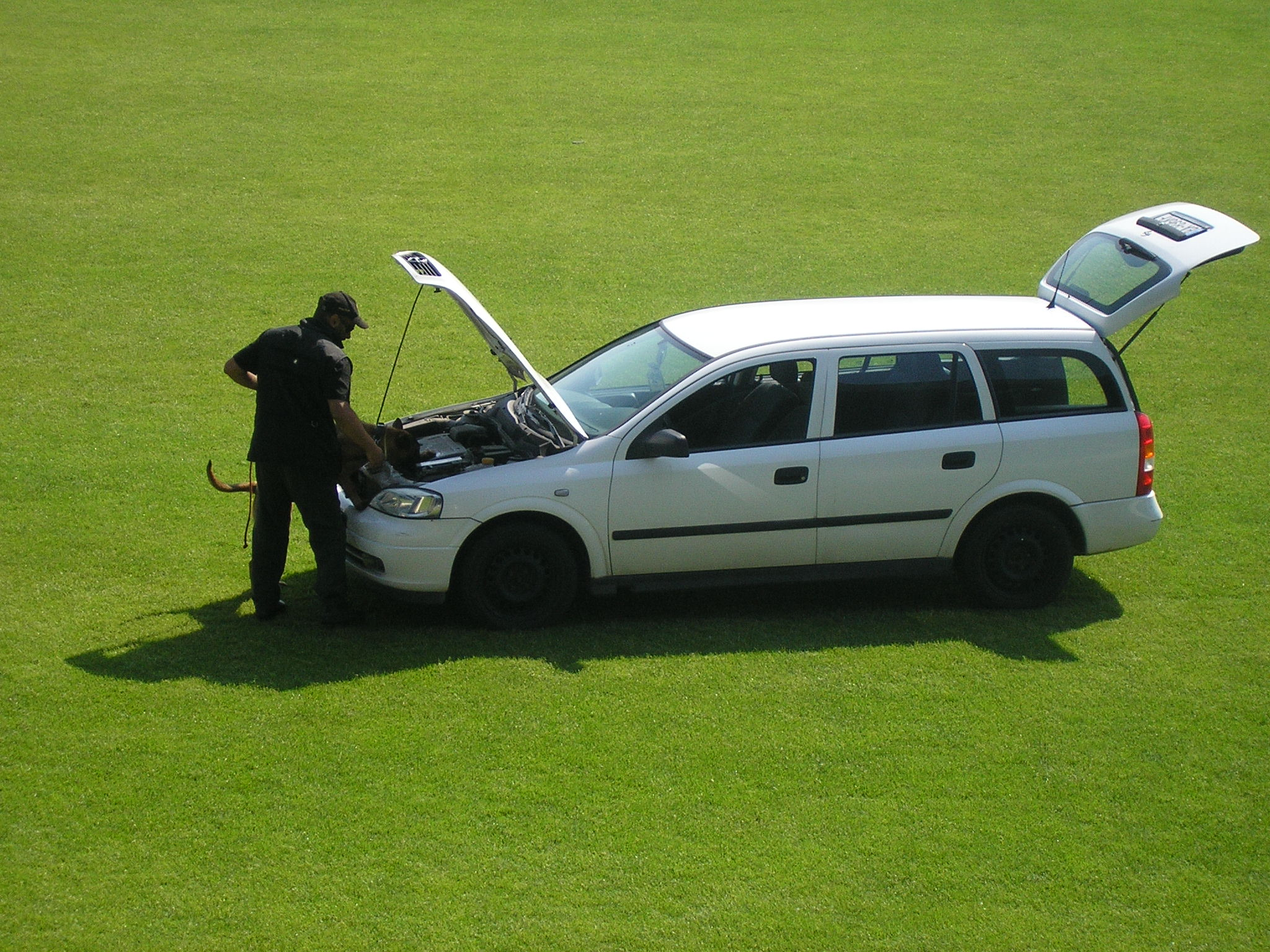 Hromadné ukážky policajnej činnosti