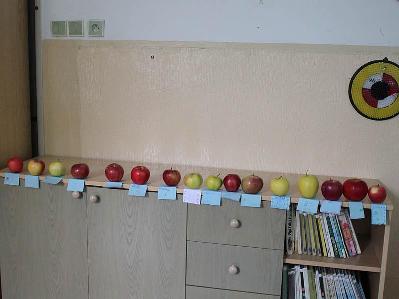 Jabĺčkový deň v ŠKD