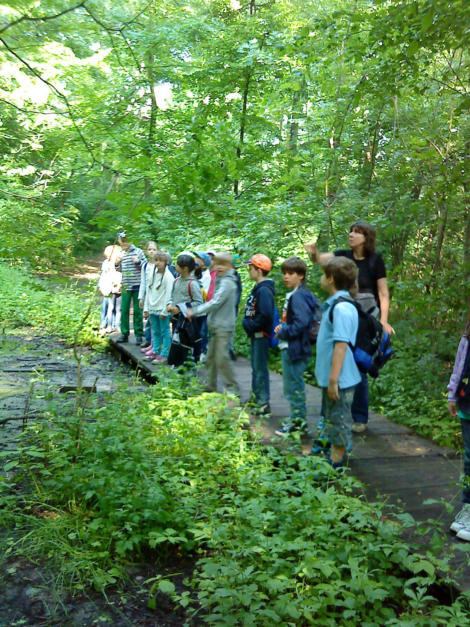 Alternatívne vyučovanie prírodovedy v Horskom parku - Dreviny