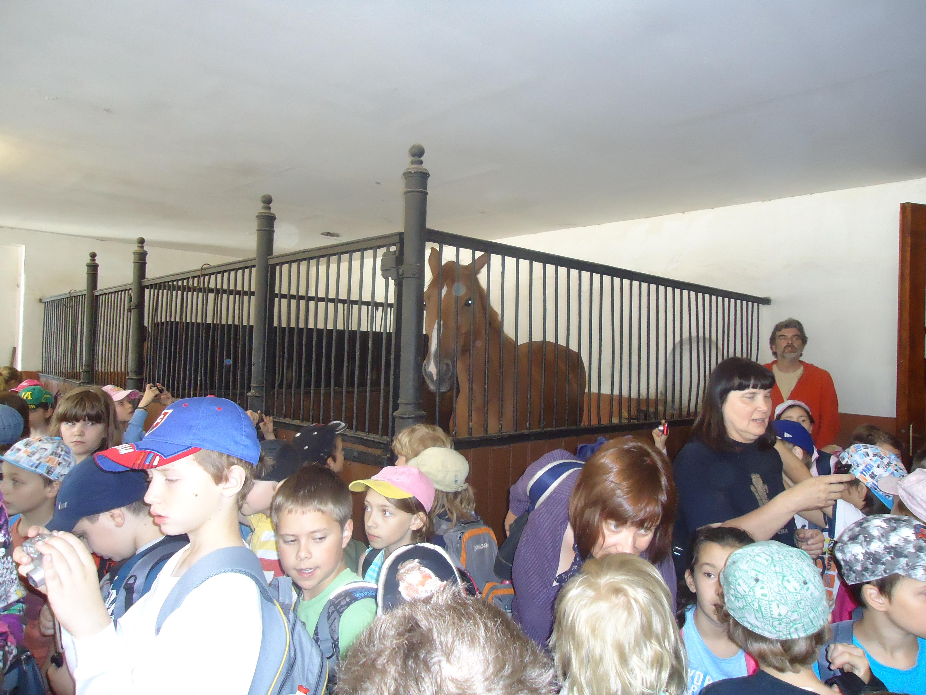 Školský výlet v Topoľčiankach