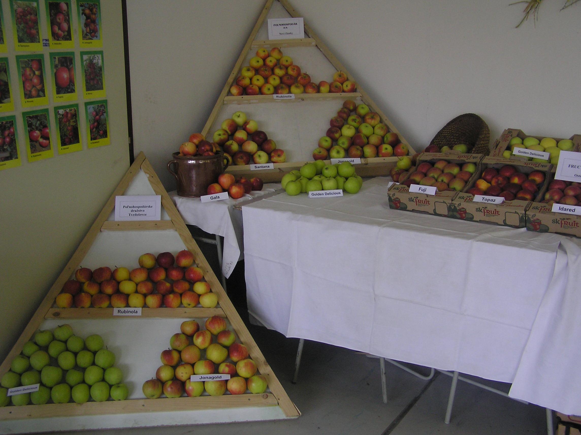 Súťaž v aranžovaní